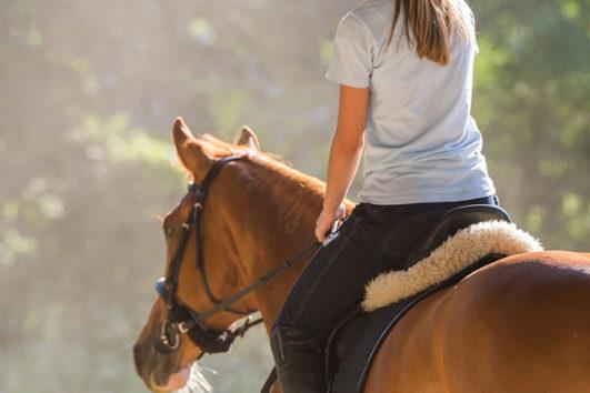 Safari a caballo en bodrum